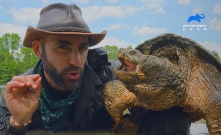 最狂動物專家卡悠提為尋傳奇巨鱷龜,險成美洲短吻鱷大餐! 最M主持人! 每集節目都當成遺作對待,讓你心跳漏拍! 最「虐」情節《野地大膽王》系列節目2月22日起每週六晚間8點播出