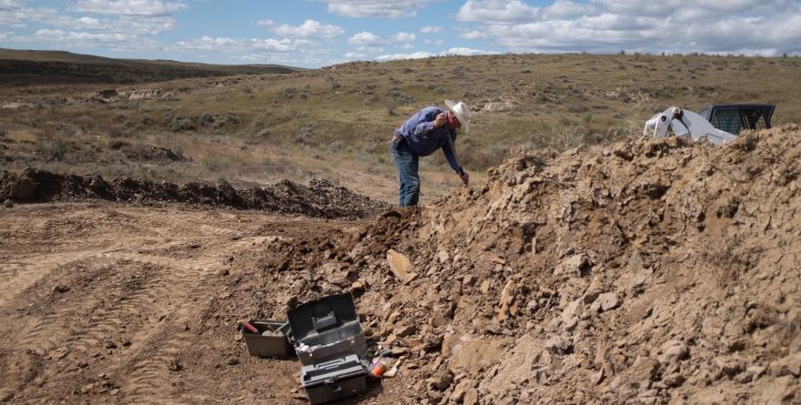 恐龍化石挖寶人
