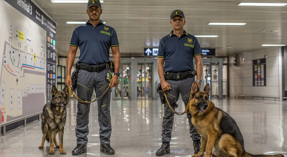 歐洲邊境護衛隊
