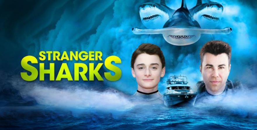 2021鯊魚週